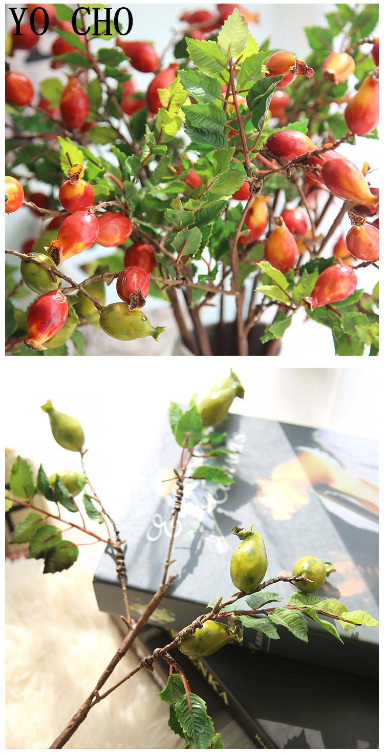 Pomegranates, berries, artificial fruit8