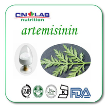 Cancer Treatment Artemisia Annua Extract 99% Artemisinin worldwide fast delivery 1kg/lot