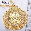 Colgante de Collar de Pavo Moneda Moneda Árabe para Las Mujeres Chapado En Oro Joyería Al Por Mayor Pequeña Cadena Monedas de Turk Hipoalergénico