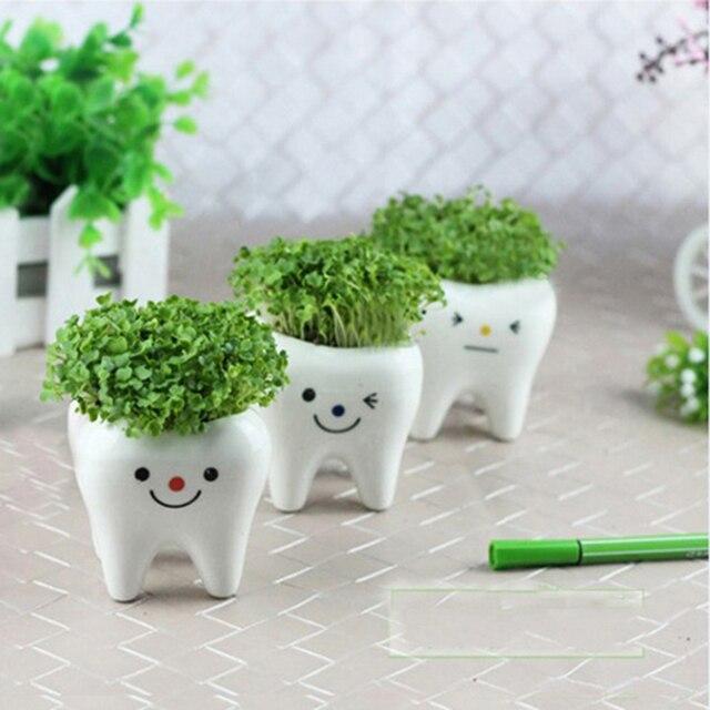 3 Pcs Contracted Creative Mini Teeth Flower Pots Planters Ceramic White Hydroponics Garden Pot Herb