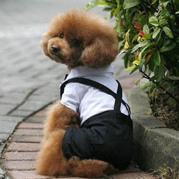 Pet Dog Rompers Cat Clothes Gentleman Suit Tuxedo Bow Tie Costume Jumpsuit Shirt S-XL