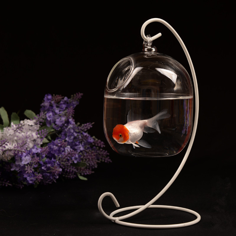 Pet Supplies Clear Aquarium Fish 15cm Height Hanging Glass Bowl Fish Tank Flower Plant Vase