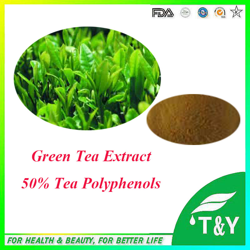 High quality & anti-tumor Green Tea Extract. with free shipping, 50% tea polyphenols 500g jasmine pearl tea fragrance green tea free shipping