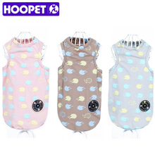 Fashionable, colourful cotton Sphynx cat clothing
