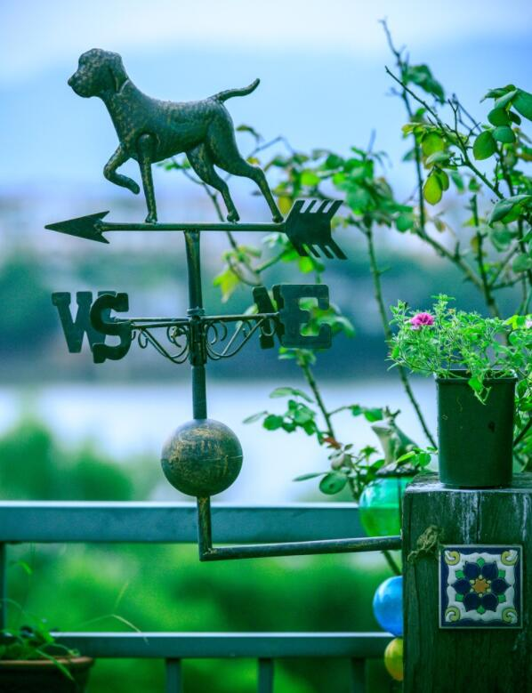 High 60cm thickness European retro cock cat puppy wrought iron wind vane wind meter garden decoration
