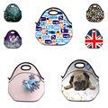 Chegam novas Duplas Neoprene Lunch Tote Bag Bolsa Tote Cooler lunchbox Food Container Gourmet quente Bolsa Para Mulheres Crianças Bebê