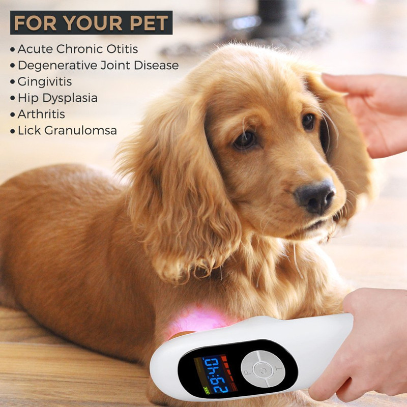 Portable animals pain relief wound healing cold laser health care instrument veterinary use lllt soft laser annimal clinic use