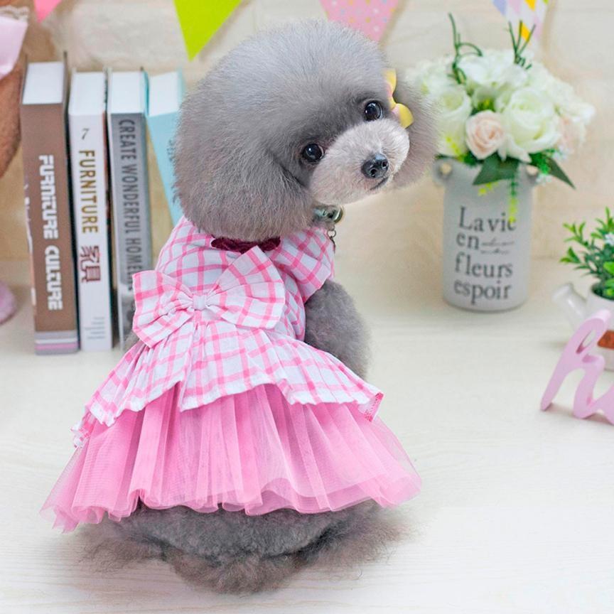 Lujoso Vestidos De Novia De Perro Imagen - Colección del Vestido de ...