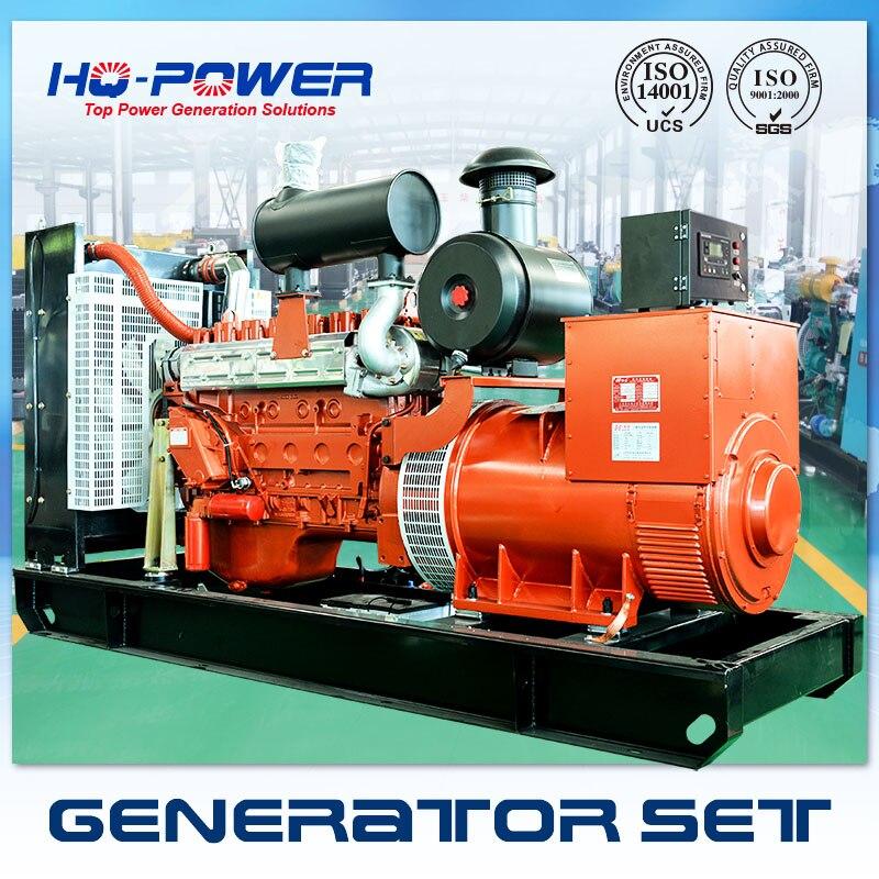 250kw генераторной установки Большие industrical генерации racardo двигателя