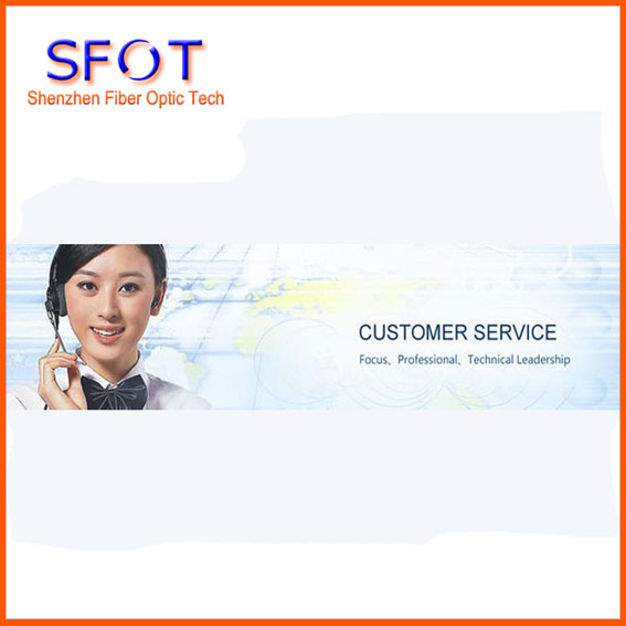 Professional Custom ServiceProfessional Custom Service