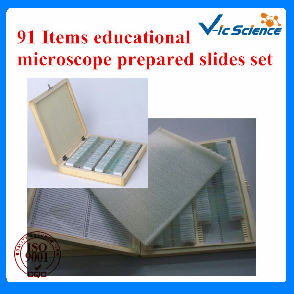 91ITEMS educational microscope prepared slides set for senior high schools hot sale ce iso 100 pc prepared microscope glass slides for various plants insects and animal tissues set a