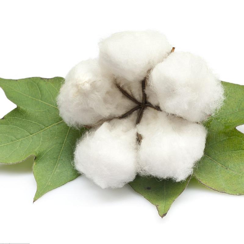 10 Pcs/ Bag Rare Bonsai Chinese Cotton White Gossypium High Yield Farm Crops For Home & Garden Flower Pot Planting Easy To Grow