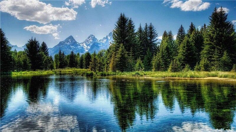 Красивые Обои Природа На Телефон Бесплатно