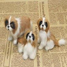 rekwizyty, bernard pies zwierząt