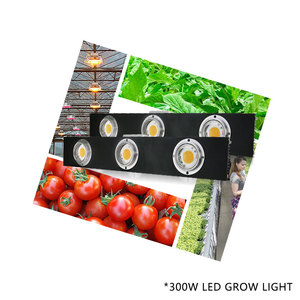 Image 4 - CREE CXB3590 300W COB Dimmable LED Grow Light Full Spectrum LED Lamp 38000LM=HPS 600W Growing Lamp Indoor Plant Growth Lighting