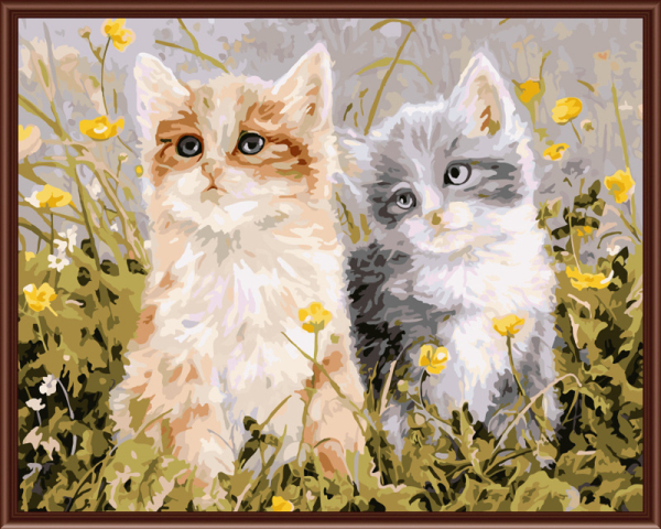 Frameless picture on wall acrylic Painting By Numbers abstract drawing by numbers unique Gift coloring by numbers Two Cute Cats
