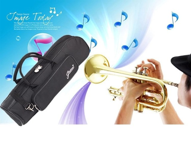 High quality Professional instrument case  portable trumpet gig bag backpack waterproof design with Adjustable Shoulder Strap