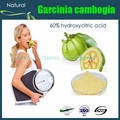 Natural Garcinia Cambogia Extract 60% HPLC Hydroxycitric Acid Powder Slimming Diet  Weight Lose And Burn Fat 50g Pack
