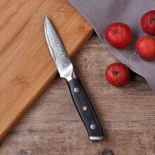 """SUNNECKO 3,5 """"Paring Knife Japansk Damaskus VG10 Super Steel Core Køkkenknive G10 Slibeproces HRC 60 Rockwell Hardness"""