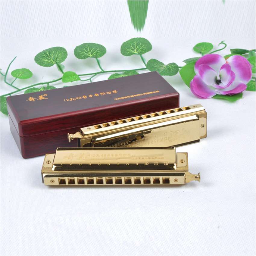QiMei 12 Hole/48 Tone Chromatic Harmonica Golden Wind Instrument Mouth Organ C Musical Instrument Harp Gift C1-D4 Square Comb цена