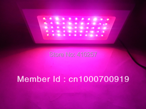 FourBand 120W LED Grow Light Panel with 60 x 3w LEDs,660nm/460nm grow lamps high quality with 3years warranty,dropshipping led grow light 180w 60 3w with all blue 460nm leds and royal blue 450nm for vegetabling lights and lighting