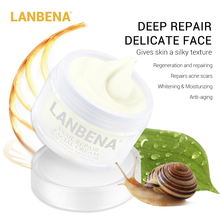 Lanbena repair cream snail Moisturizing facial Acne treatment Day Firming skin care Anti wrinkles Anti-aging