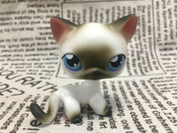 New Pet Collection Figure Toy 5 Black White Short Hair Cat Siamese Kitty Blue Eyes Nice