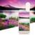 Universal 10X Zoom Lente Do Telefone Móvel Lente Do Telescópio de 3 M de Comprimento a distância de 16 Graus Ângulo Len + Coelho Clip Para Smart telefone