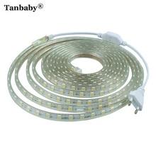 Tanbaby SMD5050 AC220V RGB LED Strip Light Waterproof Flexible Bar Light 60LED/M 1M~ 25M With EU Plug Outdoor Garden Decoration