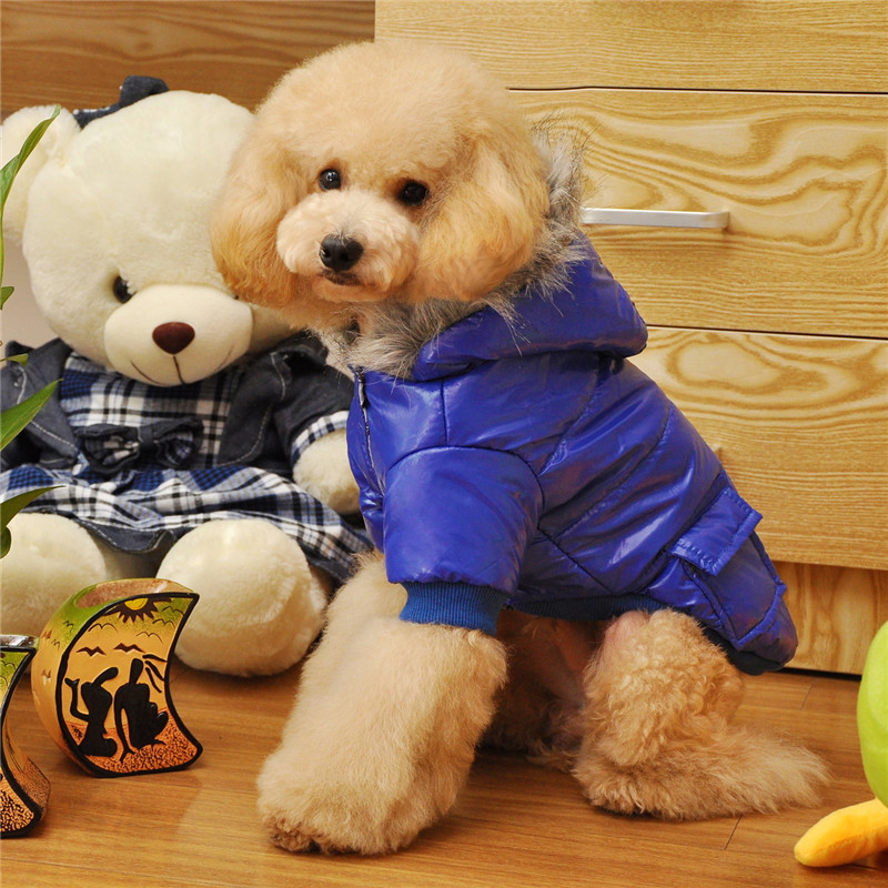 FA28 dog winter font b clothes b font cotton coat for 2 legs two Pockets design