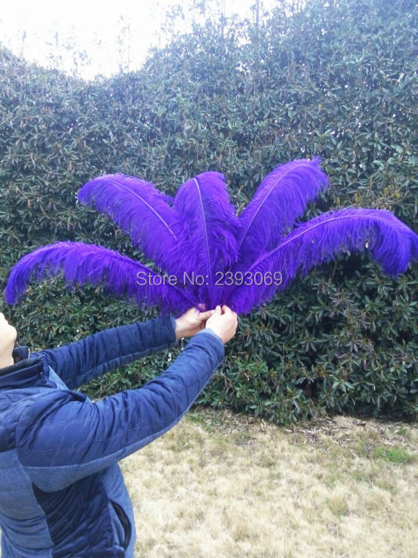 wholesale! 50pcs High Quality Hard Rod purple Ostrich Feather 24 26 in / 60 65cm, Natural Feather Ornament Decoration