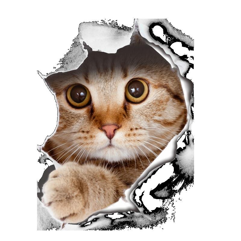 3D Товары для кошек стены Стикеры на унитазе Наклейки Ванная комната украшения стены животного виниловые наклейки Книги по искусству плакат...
