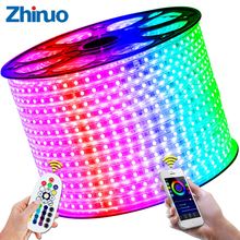 RGB Светодиодные Ленты Гибкие Огни SMD5050 Водонепроницаемый AC220V 230 В 240 В неоновый свет удаленного Управление вечерние Гостиная Home Decor DIY светодио дный