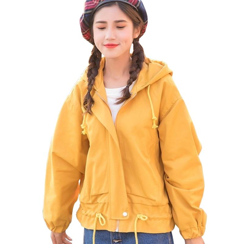2019 New Spring Harajuku Style Drawstring Hooded Women's Windbreaker   Basic     Jackets   BF Wind Loose Casual Women   Jacket   Coat