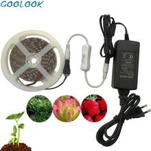 5 м водонепроницаемый растительный свет полный спектр светодиодные полосы цветок Фито лампа красный синий 4:1 для теплицы гидропоники+ адаптер питания