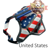 1pcs Flag Color Cool Dog Harness with Leash Puppy Pitbull Collar Chest Strap Chihuahua Products Accessories Pet Harness Supplies