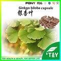 Nutrición suplementos de ginkgo biloba cápsula 500 mg * 1000 unids