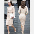 Champagne Straight Lace mother of the bride dresses plus size long sleeves wedding mother dresses vestido de madrinha
