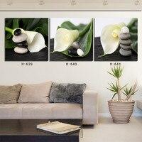 Zielony kamyki lilia druku zdjęć sztuki malowania na płótnie home decoration stylowy nowoczesny salon wejście korytarz bez ramki