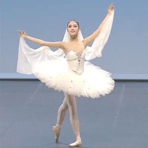 e27d5ce7f adult professional ballet costumes