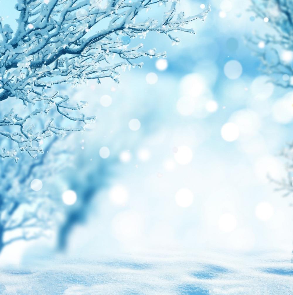 SHENGYONGBAO 10X10ft Winter backdrop Art Cloth Photography Backdrops props photography Background NDT23