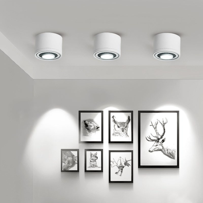 HTB1j TnPhTpK1RjSZR0q6zEwXXaL LED Surface mounted Ceiling Light 5w 7w 9w 15w Dimmable Ceiling Lamp 360 degree rotatable COB background spot light For Home