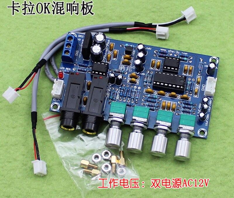 XNWY Dual power AC12V Kara OK reverb plate reverb microphone amplifier board K song equipment (H5A5)