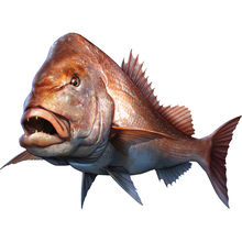 20 см автомобильный стиль большой рот бас рыба Рыбалка наклейка s pagru major лодка каяк наклейки автомобиль, грузовик, ноутбук наклейка на окно автомобиля