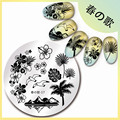 1 Pc 5.5cm Nail Art Stamp Template Hawaii Sea Mew Design Image Plate Harunouta-17
