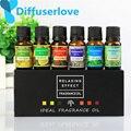 Diffuserlove Ätherische Öle für 10 ml Für Aromatherapie Wasser löslich Öle Körper Massage Entspannen 6 geschmack/box von zitrone Lavendel  ect-in Luftbefeuchter aus Haushaltsgeräte bei