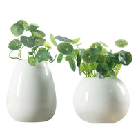 New Desgin white vase ceramic Hydroponics Vase Modern Pure And Fresh Hydroponic Flowers Sitting Room Decoration