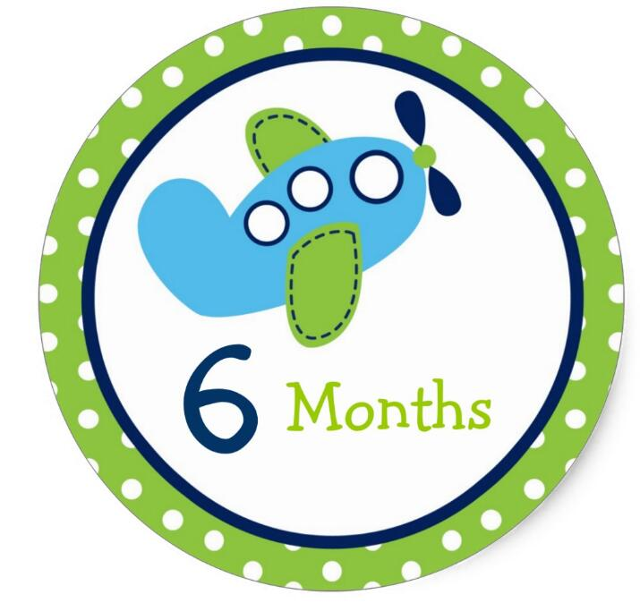 1.5inch Transportation Airplane Monthly Milestone Stickers