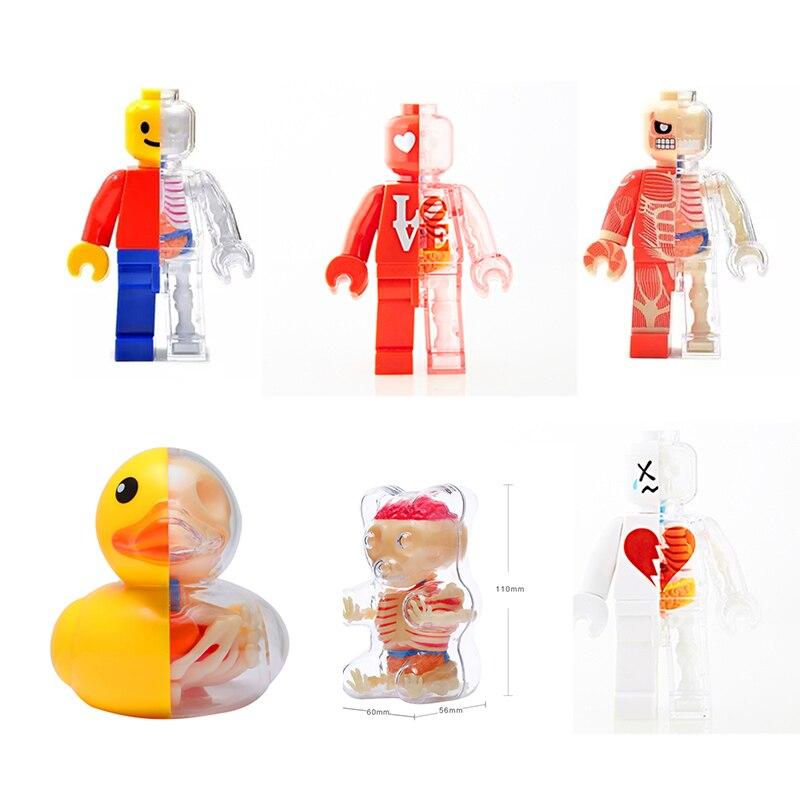 Anime 4D mistrz Puzzle montażu zabawki ludzkiego ciała narządów Model anatomiczny Model nauka medyczna nauczania Model figurki w Figurki i postaci od Zabawki i hobby na  Grupa 1