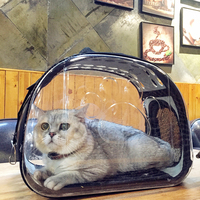 transparent-cat-bag-pet-dog-carrier-pet-puppy-backpack-dog-bag-portable-cat-carrier-bag-sleeping-chihuahua-bag-totoro-chinchilla